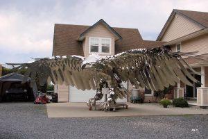vultur waterjet